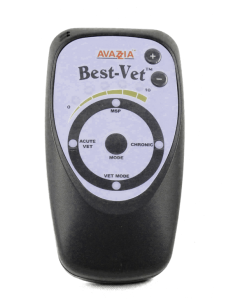 best vet pet electrophysiology